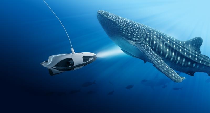 ponorka poskytuje jedinečné pohľady spod hladiny